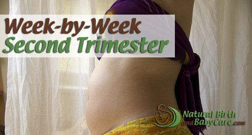 A 20 week belly on the second trimester week by week page