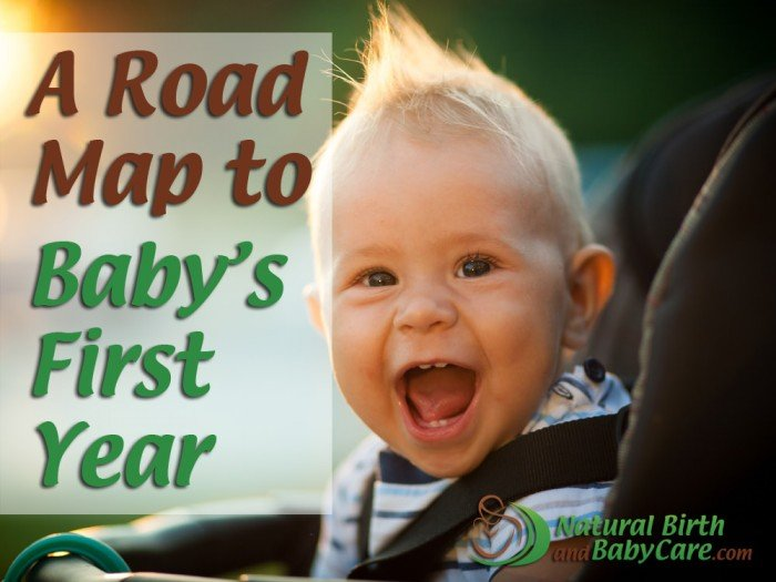 A Road Map to Baby's First Year