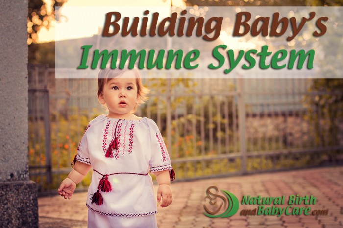 Building Baby's Immune System